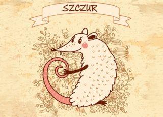 szczur, horoskop chiński, horoskop dla dziecka