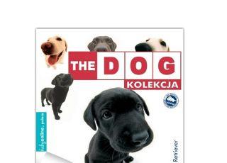 the dog 2