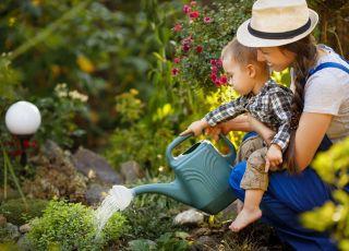 Trujące rośliny w ogrodzie
