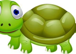 żółw, kolorowanka dla dzieci