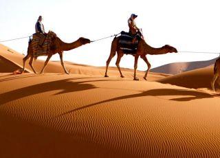 W pustyni i w puszczy - test z lektury