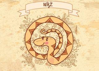 wąż, horoskop chiński, horoskop dla dziecka