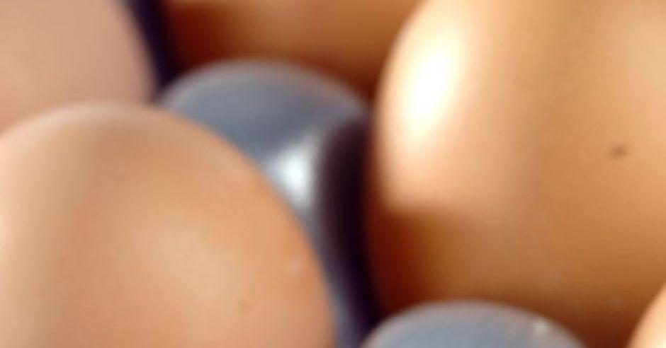 wielkanoc, jajka