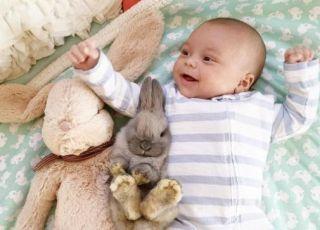 Więź chłopca z króliczkami uchwycona na zdjęciach