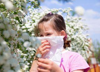 wiosenne, kichanie, alergia, dziecko