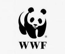 1 procent podatku 2020 - lista organizacji  WWF