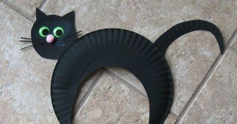 z talerzyka, talerzyk papierowy, kot