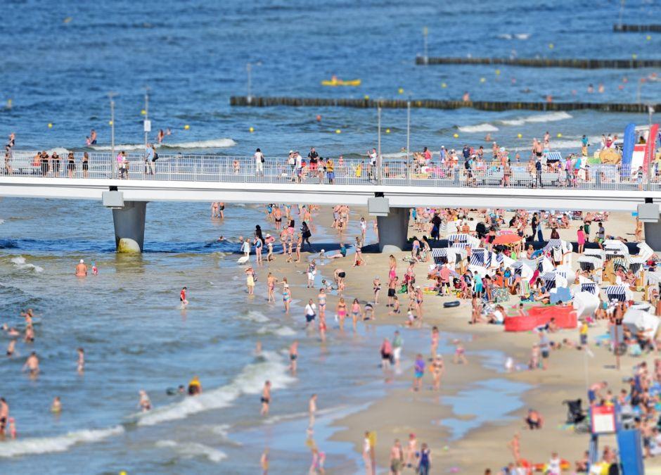 zachowanie ludzi na plaży