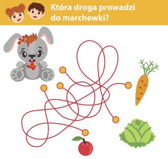 zagadki dla dzieci zagadki dla małych dzieci znajdź drogę