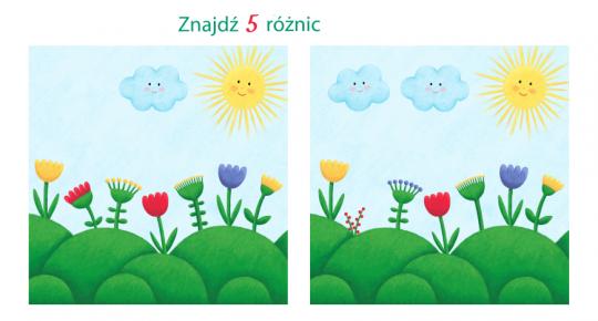 zagadki dla dzieci zagadki dla małych dzieci znajdź różnice