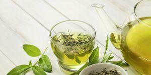 zielona herbata w ciąży, czy można pić zieloną herbatę w ciąży, zielona herbata właściwości