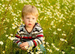 9 ziół dla dziecka na zwiększenie odporności