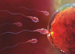 Zła jakość plemników a poronienia