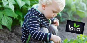 Żywność ekologiczna dla dziecka