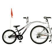 Co-Pilot, rowerek przyczepka marki WeeRide - zdjęcie nr 1 - Bangla