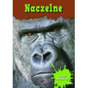 Encyklopedia świat zwierząt NACZELNE marki Wydawnictwo MD Monika Duda - zdjęcie nr 1 - Bangla