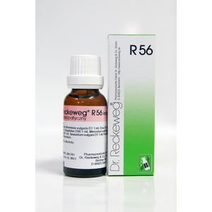 R56 Krople przeciw robaczycom marki Dr. Reckeweg - zdjęcie nr 1 - Bangla