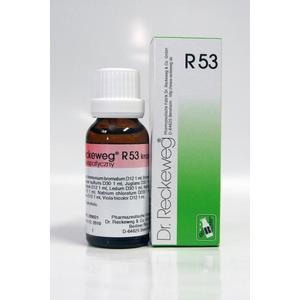 R53 Krople przeciw trądzikowi marki Dr. Reckeweg - zdjęcie nr 1 - Bangla