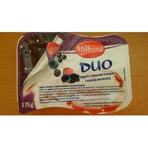 Jogurt duo, różne rodzaje marki Milbona - zdjęcie nr 1 - Bangla
