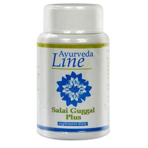 Salai Guggal Plus, naturalny suplement diety marki Ayurveda Line - zdjęcie nr 1 - Bangla