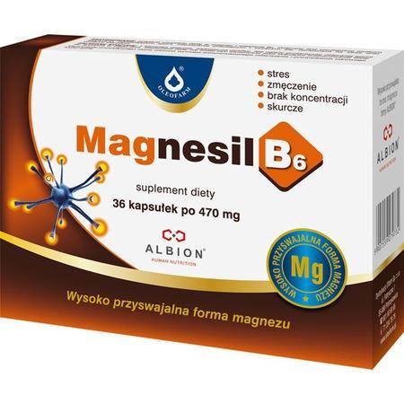 Magnesil B6 marki Oleofarm - zdjęcie nr 1 - Bangla