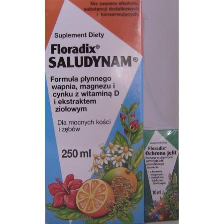 Floradix Saludynam tonik marki Salus International Sp. z o.o. - zdjęcie nr 1 - Bangla