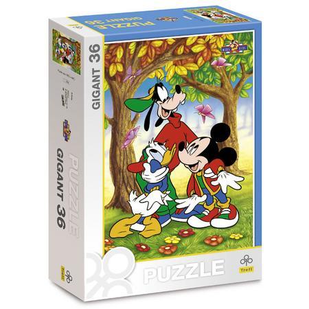 Puzzle Gigant 36, Różne motywy marki Trefl - zdjęcie nr 1 - Bangla
