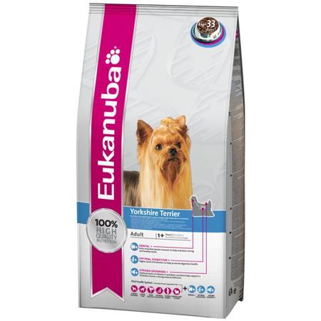 Adult Yorkshire Terrier marki Eukanuba - zdjęcie nr 1 - Bangla