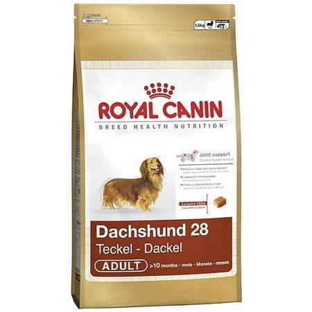 Dachshund marki Royal Canin - zdjęcie nr 1 - Bangla
