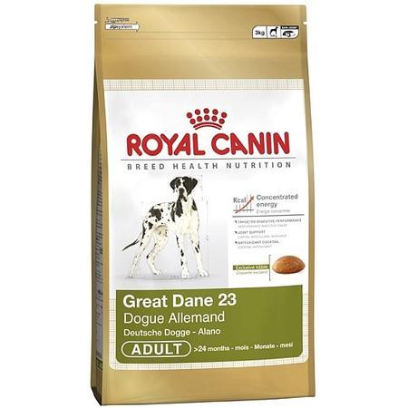 Great Dane marki Royal Canin - zdjęcie nr 1 - Bangla