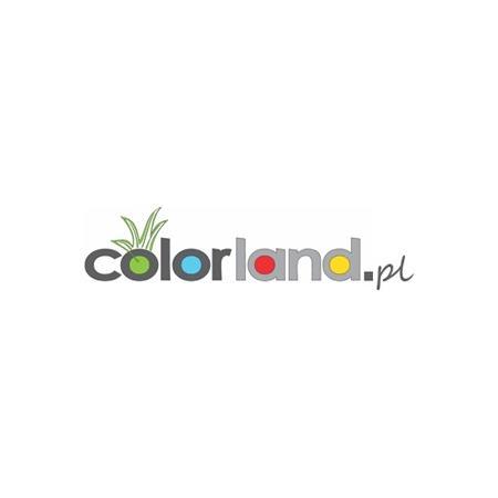 Bangla - Zdjęcie nr 1 sklepu Colorland.pl - Sklep internetowy z fotoproduktami