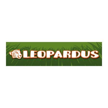 Bangla - Zdjęcie nr 1 sklepu Leopardus - Sieć sklepów zoologicznych